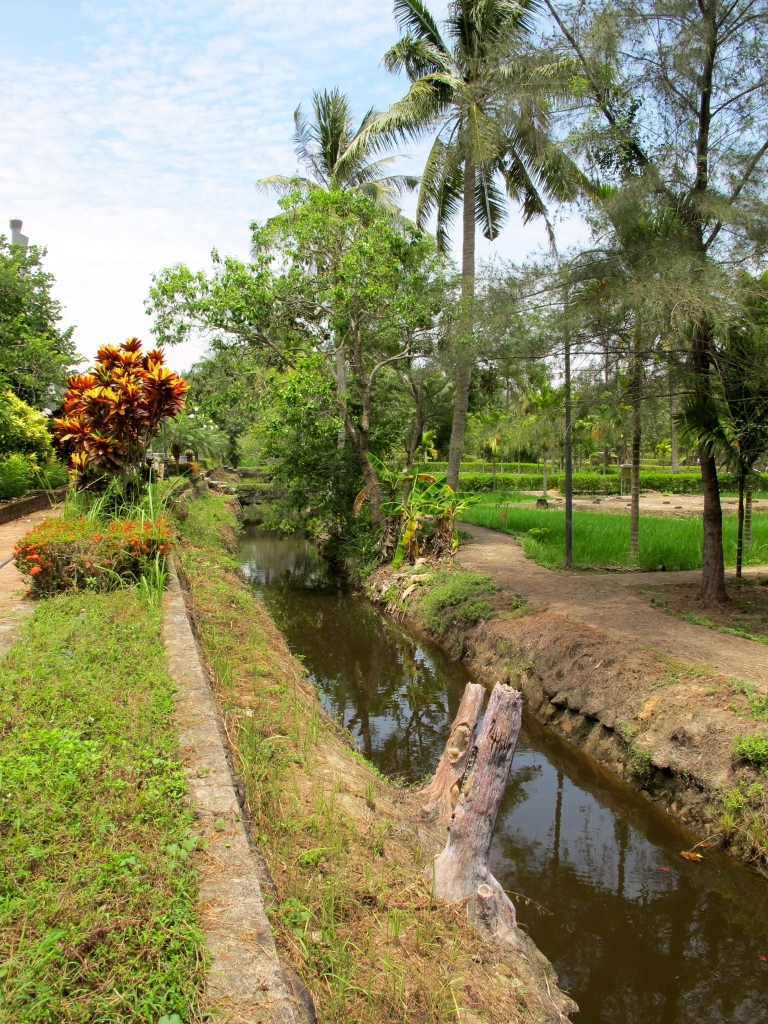 The ditch from Ron Haeberle's famous My Lai photograph. (Photo by Nissa Rhee, June 2014)