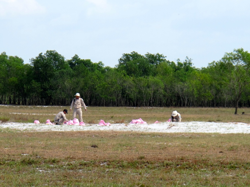 Finally, the EOD team lays down the explosives that will destroy the ordnance. (Photo by Nissa Rhee, June 2014)